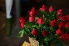 Ramalhete de rosas vermelhas bonitas Foto de Stock Royalty Free