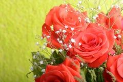 ramalhete de rosas vermelhas de florescência no vaso, fim acima da flor Fotografia de Stock Royalty Free