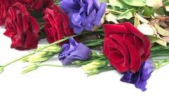 Ramalhete de rosas vermelhas e de lisianthus isolado no backgroun branco Imagem de Stock