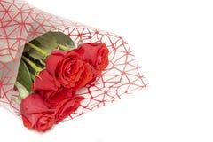 Ramalhete de rosas vermelhas em um fundo branco fotografia de stock royalty free