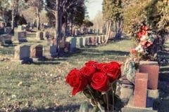 Ramalhete de rosas vermelhas em um vaso em um cemitério Fotografia de Stock