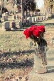 Ramalhete de rosas vermelhas em um vaso em um cemitério Fotos de Stock
