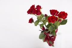 Ramalhete de rosas vermelhas no vaso no fundo branco Fotos de Stock Royalty Free