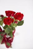 Ramalhete de rosas vermelhas no vaso no fundo branco Fotos de Stock
