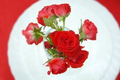 Ramalhete de rosas vermelhas no vaso de vidro sobre a placa branca Configuração lisa Vista superior fotografia de stock