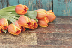 Ramalhete de tulipas alaranjadas fotos de stock royalty free