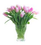 Ramalhete de tulipas amarelas, roxas e vermelhas Fotografia de Stock Royalty Free