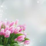 Ramalhete de tulipas amarelas, roxas e vermelhas Fotografia de Stock