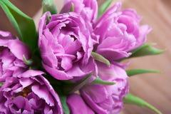 Ramalhete de tulipas cor-de-rosa Imagens de Stock