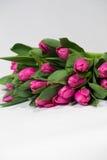 Ramalhete de tulipas cor-de-rosa no fundo branco Fotografia de Stock