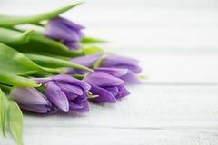 Ramalhete de tulipas do purpleviolet no fundo de madeira branco Imagem de Stock
