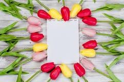 Ramalhete de tulipas e do presente coloridos da mola Fotos de Stock