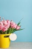 Ramalhete de tulipas frescas cor-de-rosa com o bichano-salgueiro na cubeta amarela Foto de Stock