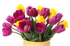 Ramalhete de tulipas roxas e amarelas foto de stock royalty free