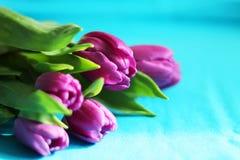 Ramalhete de tulipas roxas, foco seletivo, fundo azul, espaço da cópia foto de stock