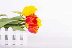 Ramalhete de tulipas vermelhas e amarelas no fundo de madeira branco Fotos de Stock