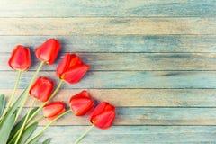 Ramalhete de tulipas vermelhas na luz - fundo retro de madeira azul do grunge com espaço da cópia Fotos de Stock