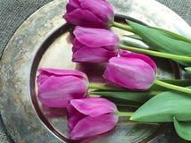 Ramalhete de tulips cor-de-rosa Foto de Stock