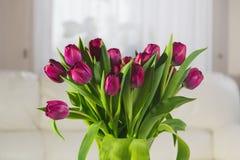 Ramalhete de tulips cor-de-rosa em um fundo branco Fotografia de Stock Royalty Free