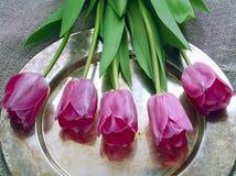 Ramalhete de tulips roxos fotos de stock royalty free