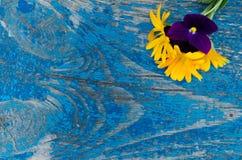 Ramalhete delicado, pequeno das flores do calendula e violetas sobre a placa de madeira Imagem de Stock