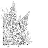 Ramalhete do canto do vetor com o grupo da flor do tremoceiro ou do Lupine ou do Bluebonnet do esboço, o botão e folha ornamentad ilustração stock