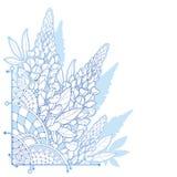 Ramalhete do canto do vetor grupo da flor do tremoceiro ou do Lupine ou do Texas Bluebonnet do esboço, botão e folha ornamentado  ilustração royalty free