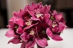 Ramalhete do casamento com as orquídeas de cores do marsala foto de stock