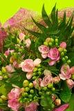 Ramalhete do Freesia Fotografia de Stock Royalty Free