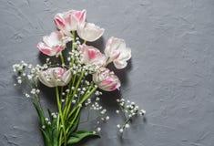 Ramalhete do jardim das tulipas em um fundo cinzento, vista superior Fotos de Stock