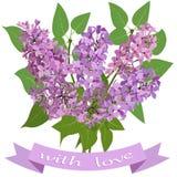 Ramalhete do lilás e da fita com a inscrição com amor ilustração stock