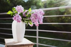 Ramalhete do lilás em um vaso branco em uma tabela de madeira nos raios do sol r foto de stock royalty free