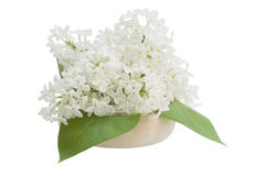 Ramalhete do lilás, isolado no fundo branco Imagem de Stock