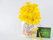 Ramalhete do narciso amarelo do dia de mãe com vale-oferta Foto de Stock Royalty Free