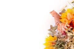Ramalhete do outono Flores e groselha de cabo secadas no branco Imagens de Stock Royalty Free