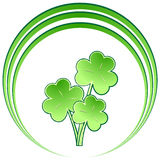 Ramalhete do Shamrock com círculos Foto de Stock Royalty Free