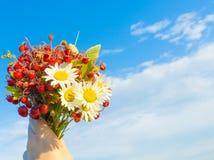 Ramalhete do verão Imagem de Stock Royalty Free