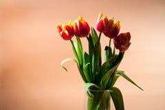 Ramalhete do vermelho com as tulipas amarelas da mola Imagem de Stock Royalty Free