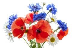 Ramalhete do Wildflower imagem de stock royalty free
