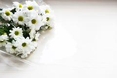 Ramalhete dos crisântemos brancos no fundo branco Imagem de Stock