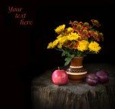 Ramalhete dos crisântemos e do Gayllardiyas com frutos maduros Fotografia de Stock Royalty Free