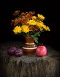 Ramalhete dos crisântemos e do Gayllardiyas com ri Fotografia de Stock Royalty Free