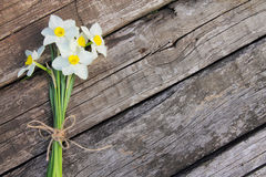 Ramalhete dos daffodils Imagem de Stock Royalty Free