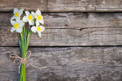 Ramalhete dos daffodils Fotos de Stock