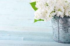 Ramalhete dos lilás brancos Imagem de Stock Royalty Free