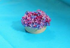 Ramalhete dos lilás e dos miosótis Fotos de Stock Royalty Free