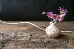 Ramalhete dos poucos flor lilás Xeranthemum no vaso redondo da argila no wo fotos de stock
