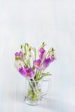 Ramalhete dos snowdrops e dos açafrões Imagem de Stock Royalty Free
