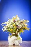 Ramalhete dos Wildflowers Imagem de Stock Royalty Free