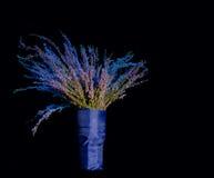 Ramalhete elegante das flores ajustado no fundo preto. Foto de Stock